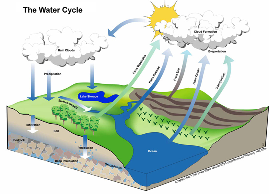 The Water Cycle 2
